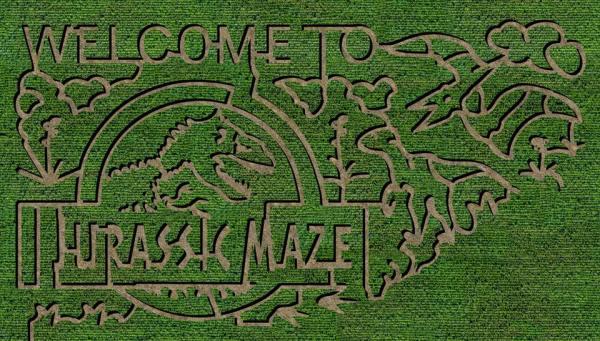 Sunny Day Farms. Georgia. Corn Maze