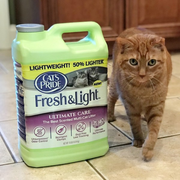 Save a shelter cat with your purchase of Cats Pride litter. For each green jug you buy, Cats Pride will donate one pound of litter to rescue shelters in the United States. #rescuecat