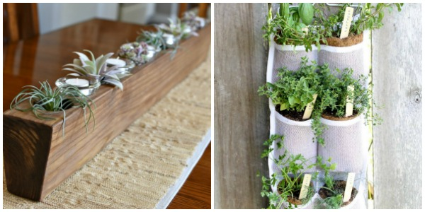 Merry Monday Features. Mother's Day DIY Ideas Day Can Make For Mom Herb planter. Sugar Mold