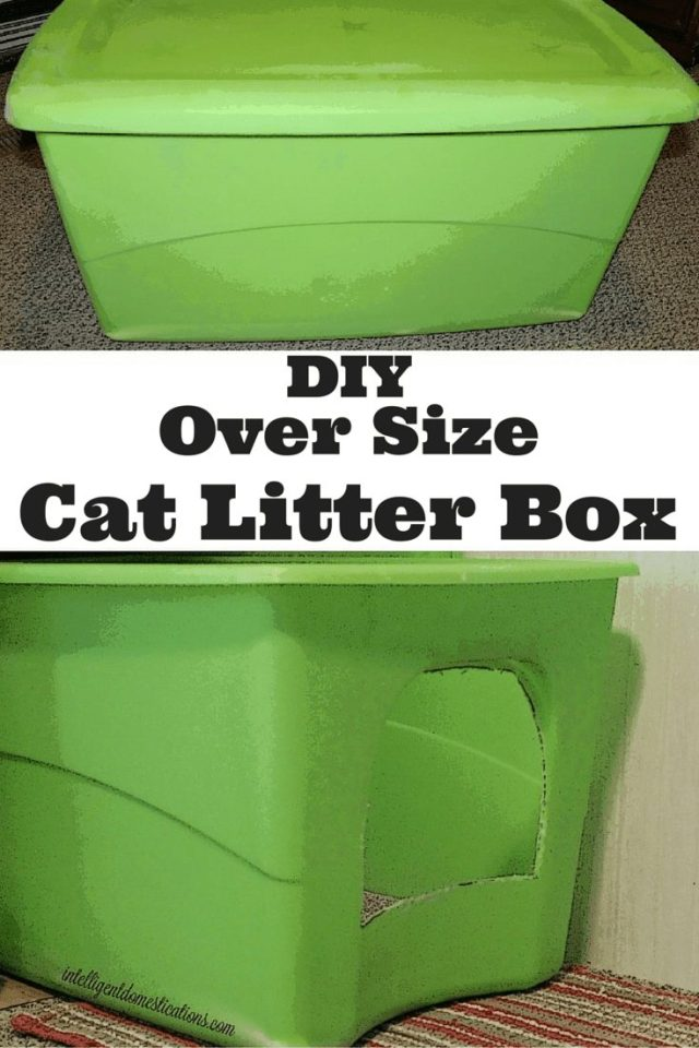 Make your own oversized litter box for your big cat
