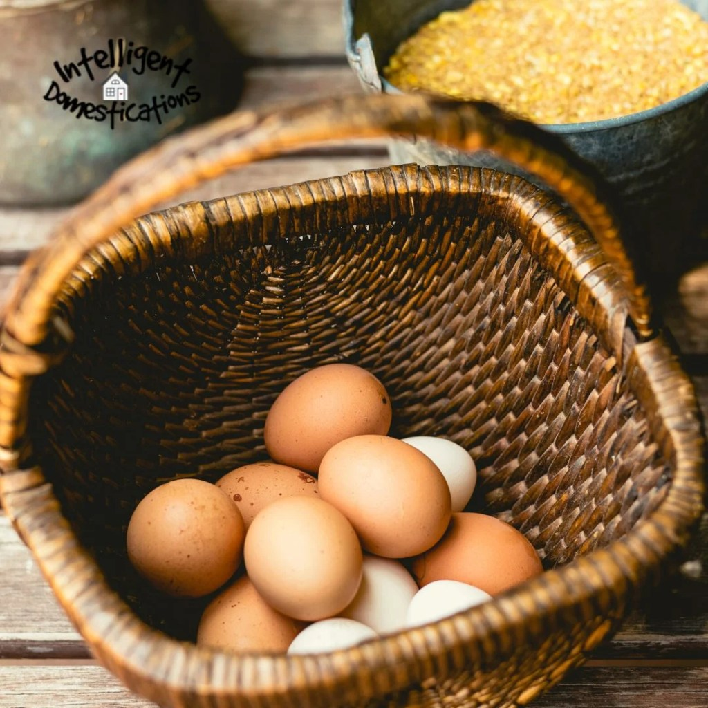 Brown and white eggs in a farmhouse style basket sitting on a porch floor next to a metal bucket of corn