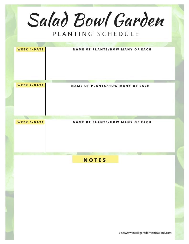 printable lettuce planting schedule