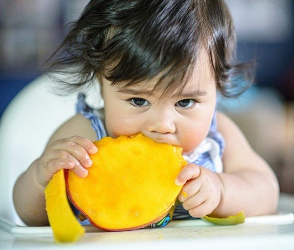 what age can you introduce mango baby food