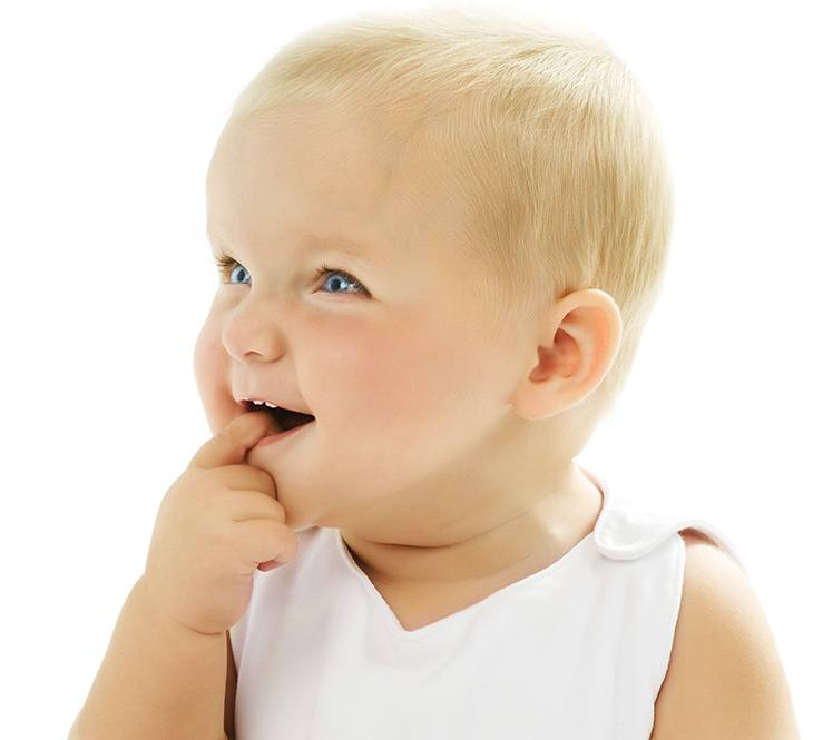 Between 8 to 12 months the upper front teeth begin to emerge
