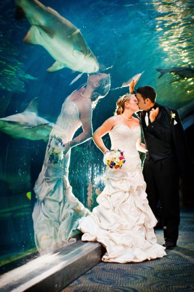 Funny perfectly timed wedding photo in an aquarium