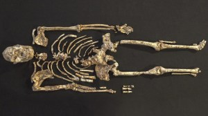 The 'Little Foot' reveals how human ancestors used weapons