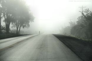 A Cyclist Emerges from the Fog - By Andor