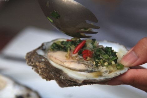 Attacking Oysters © Andor (5)