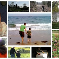 Adventures in Foster Care: A Reflection