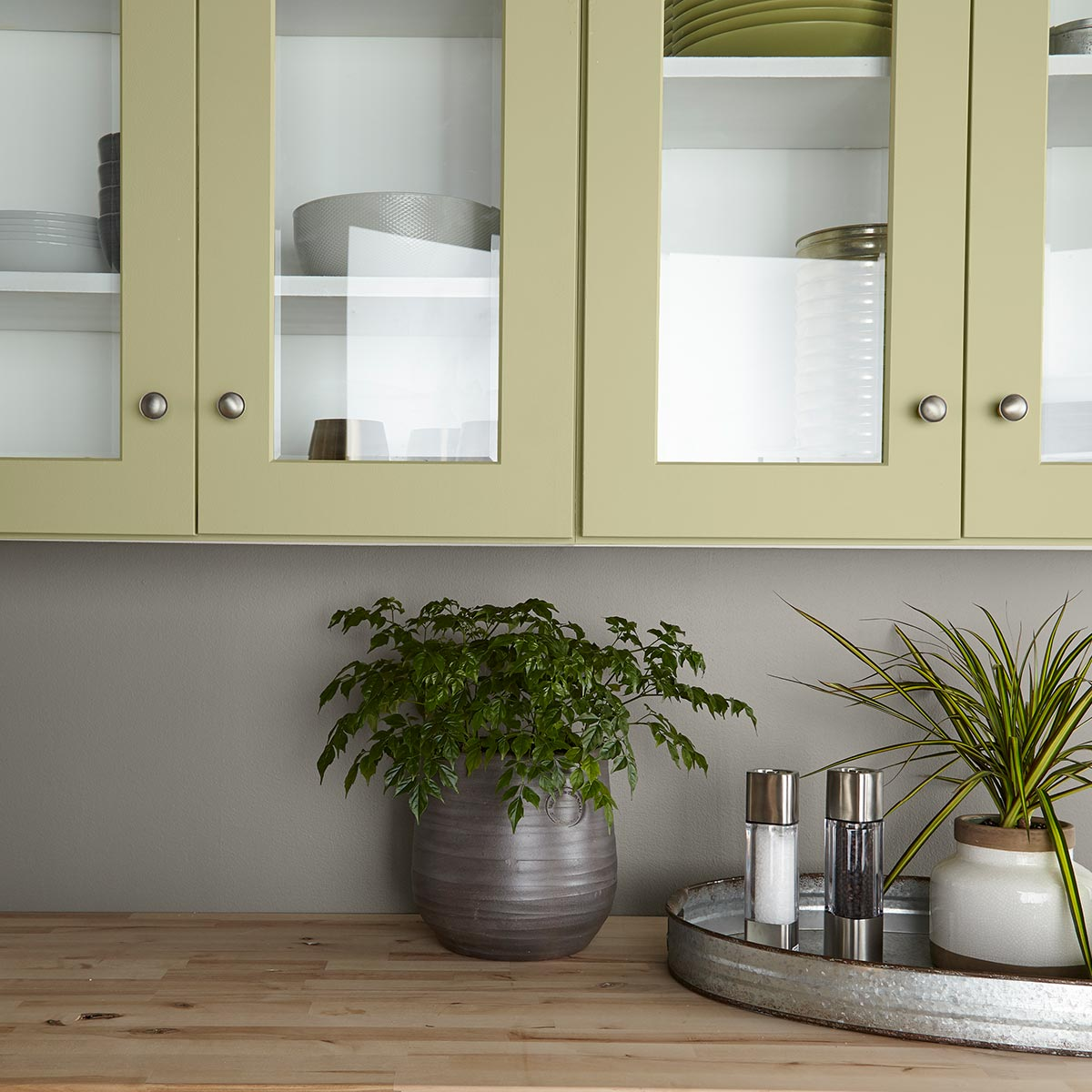 Behr 2020 COY Back to Nature, Kitchen