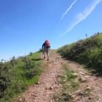 All uphill - no lie