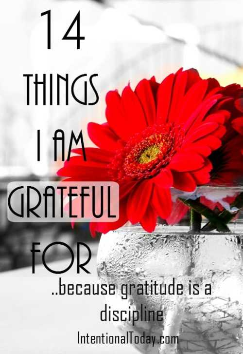 How can we be more thankful in our entiled world? begins with cultivating a thankful mindset. Be inspired by my own gratitude list: 14 things I am grateful for today.