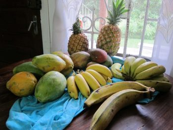 Tropical fruit from market