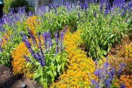 Bush Pasture Park, Salem, Oregon | Intentional Travelers