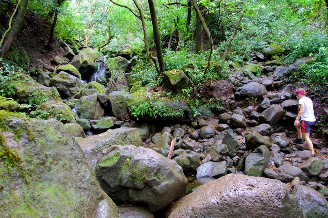 Lulumahu Falls hike, Oahu   Intentional Travelers