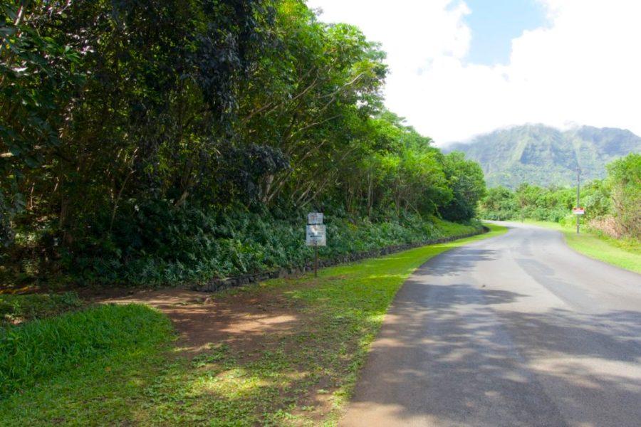Olomana Hike - Oahu, Hawaii | Intentional Travelers