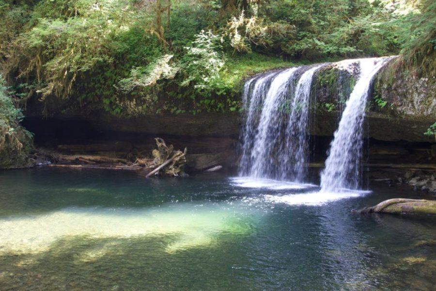 Butte Creek Falls, Silverton Oregon Staycation | Intentional Travelers