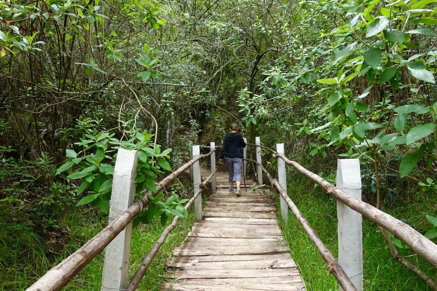 Amaru Bioparque Zoo: A Must See in Cuenca, Ecuador | Intentional Travelers