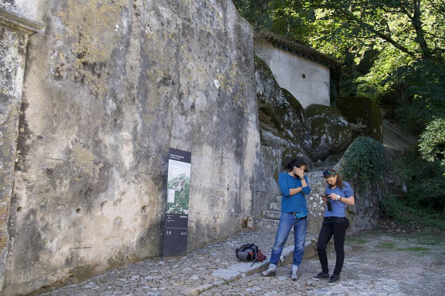 Hike to Pena Palace and Moorish Castle