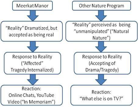 pre-writing-flow-chart.jpg