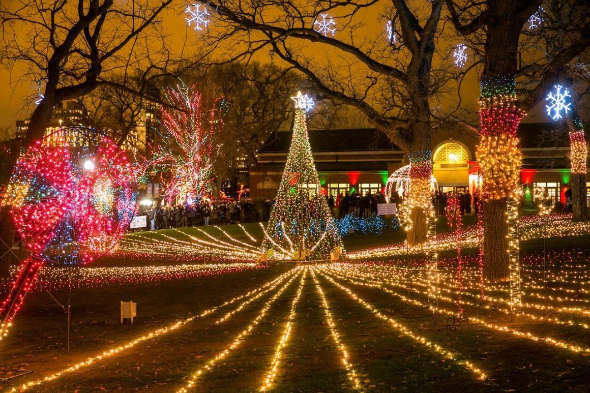 Lincoln Park ZooLights and Its More Than Two Million Lights Are Back | WTTW  Chicago