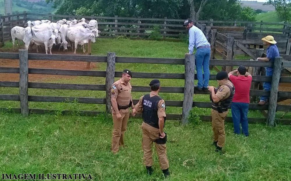 Quatro paranaibenses são presos por furto de gado em Carneirinho