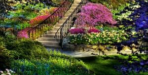 dream-spring-2012-beautiful-garden_2560x1600_96626-300x152
