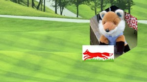 2 New Generations of Little Foxes & Silver Foxes supported in Leicestershire