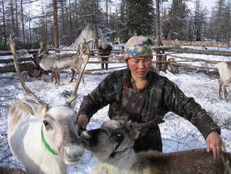 Dukha woman with her reindeer. photo Galdu
