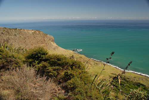 Tasman Sea. Photo taken by Aroha Pounamu