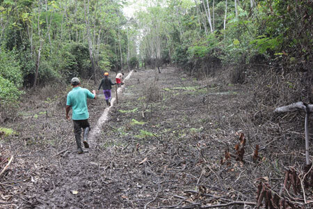 Kukama community leaders walk along the pipeline through a marshy area. (Photo: Barbara Fraser)