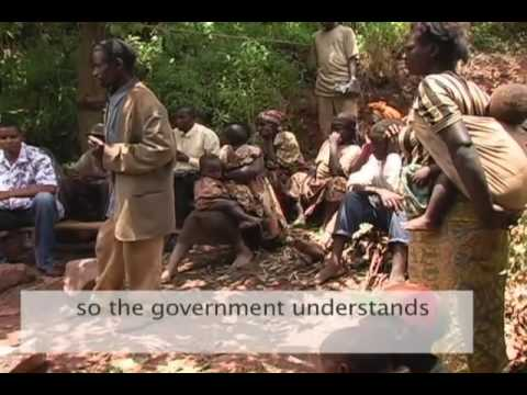 essay on pygmies of africa Identity baka people are hunter-gatherers, formerly called pygmies, located in the central african rain forest having heights of 152 meters (5 feet) in average as.