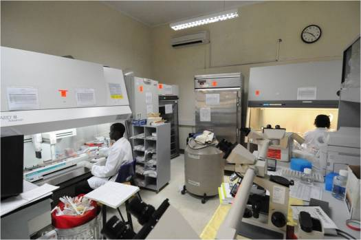 Research Lab in Kenya Africa