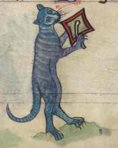 Cat manuscript
