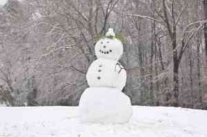 Snow Man Wallace Stevens