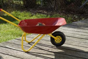 William Carlos Williams Red Wheelbarrow