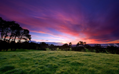 High-resolution desktop wallpaper Beautiful Morning by Chris Gin