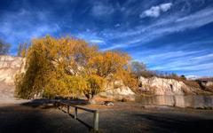 High-resolution desktop wallpaper Golden Tree by Chris Gin