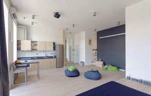 lovely-modern-apartment-open-space