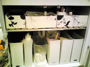 洗面台の下の収納のアイデア!100均編1