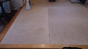 へりなし畳の表替 (宇治市)