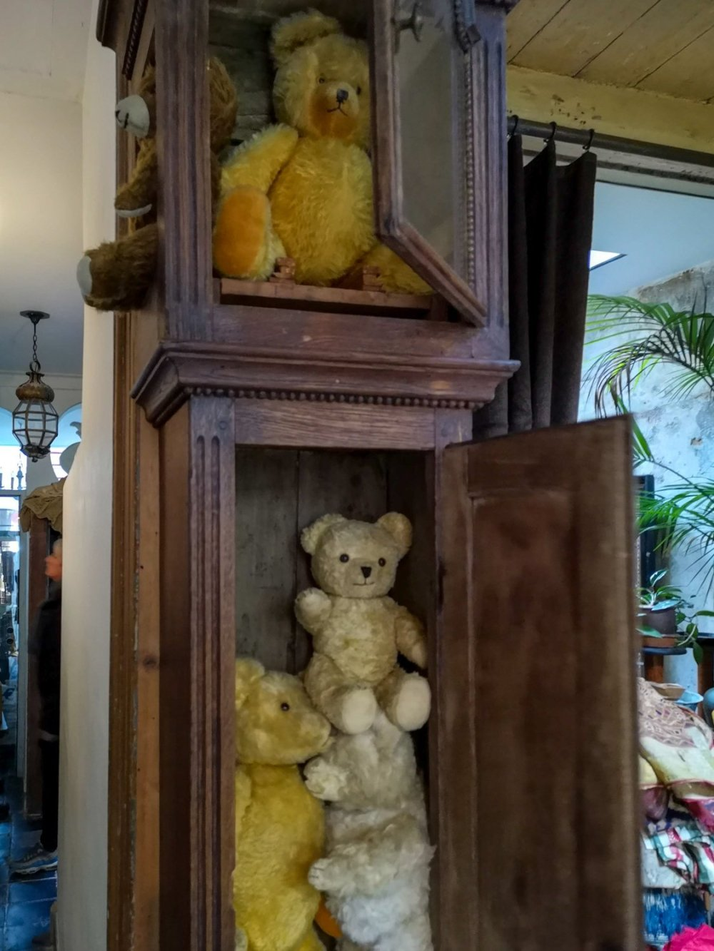 vintage teddy bears at Anterieur Leiden