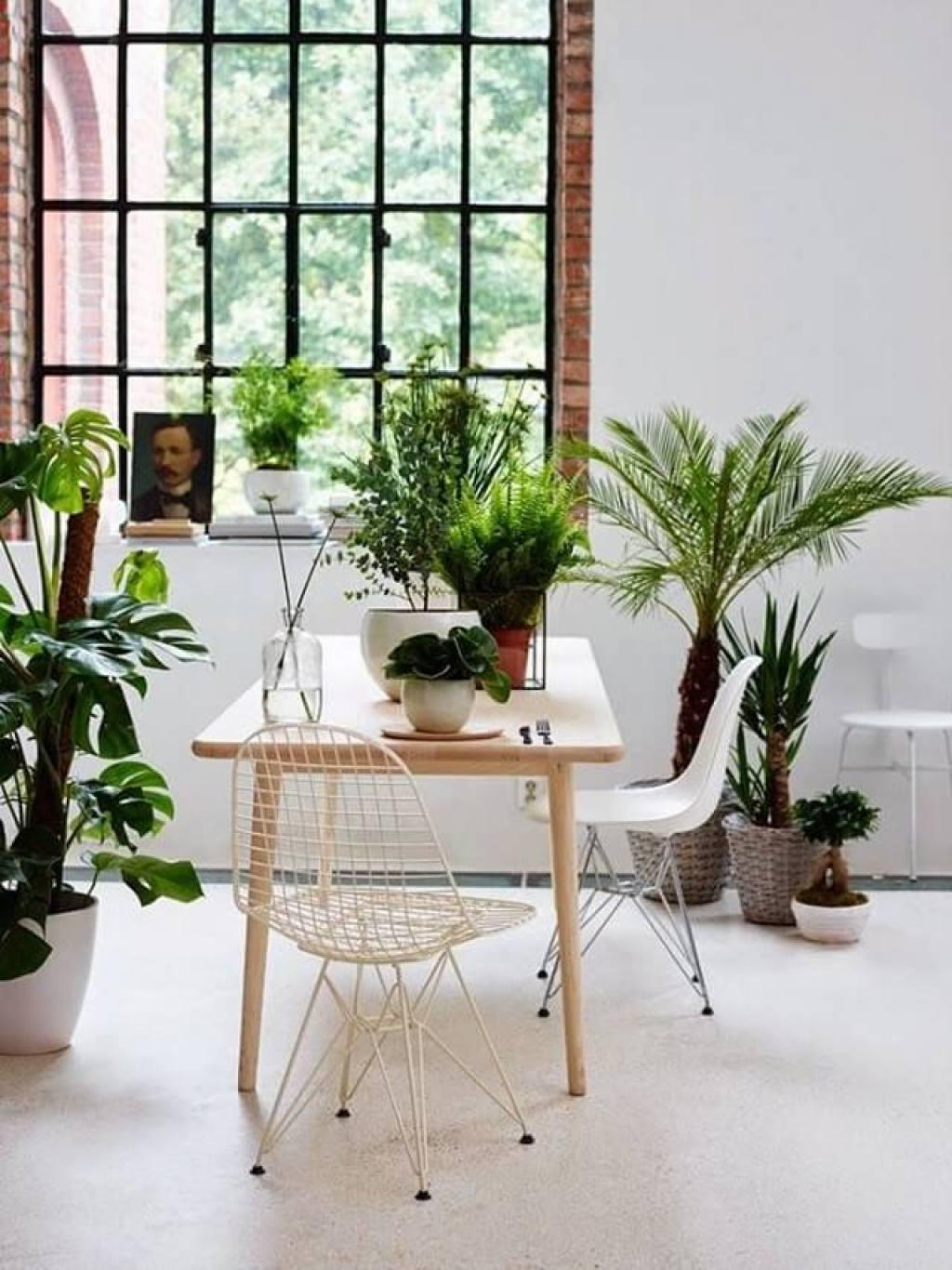 home office dengan tanaman
