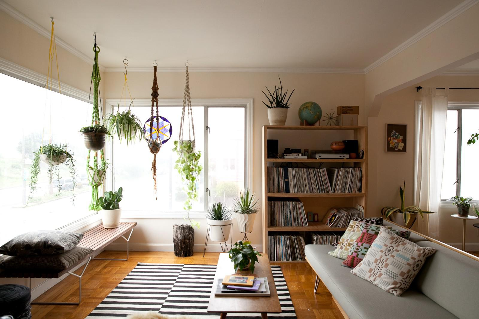 Decorating Our Homes With Plants