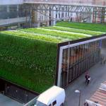 22-ideas-techos-verdes-19