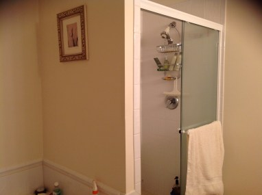 Before: Master Bath Shower
