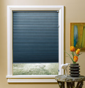 Hunter Douglas Duette Shade