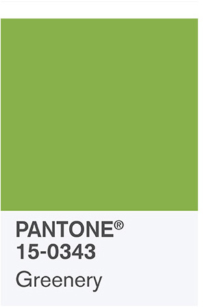 """Pantone 2017 Color of the Year """"Greenery"""" 