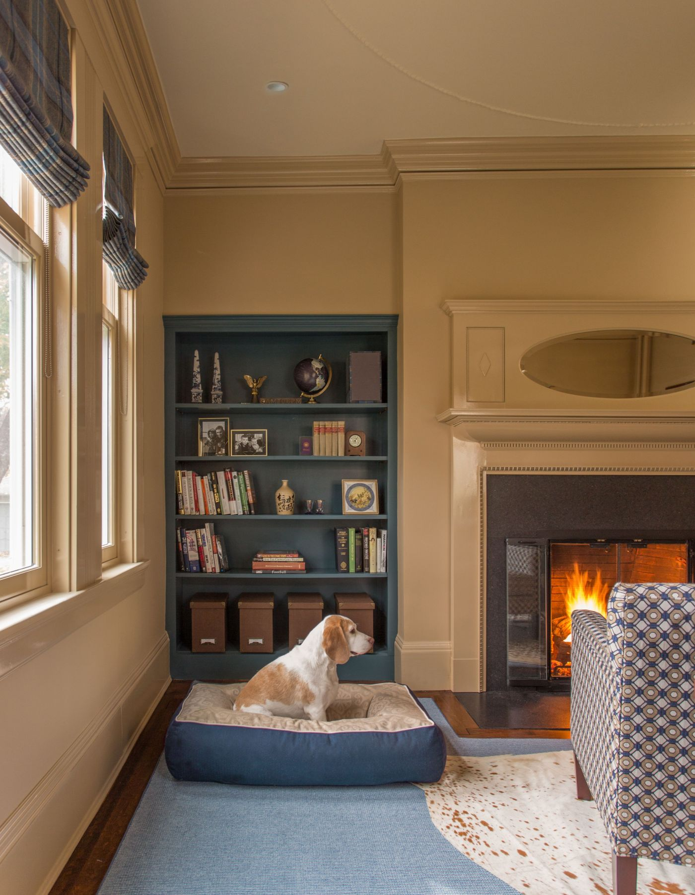 Dogs of Design | Interiors for Families