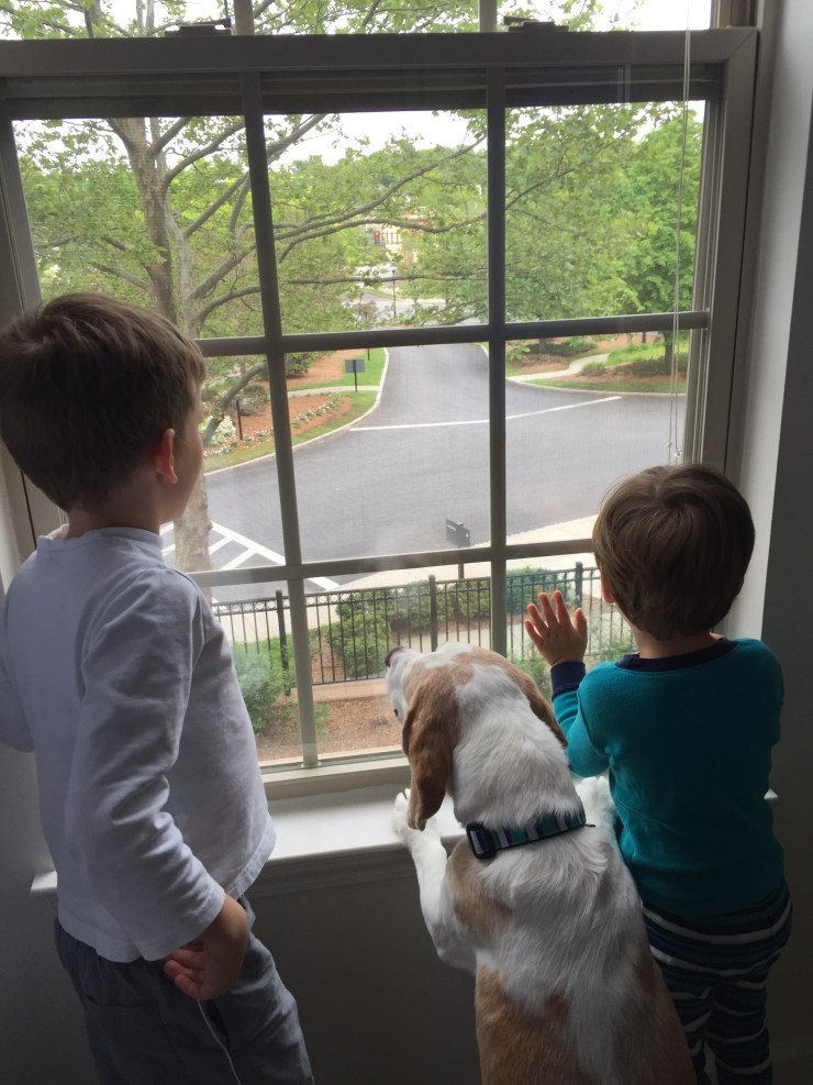 Day 92: Project 1896 (Our Home Renovation) | Kelly Rogers Interiors | Interiors for Families